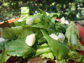 Classic-French-Green-Salad