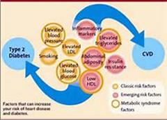 diabetes_and_cardiovascular_problems